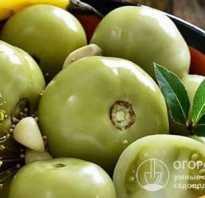 Засолка зеленых помидор с начинкой