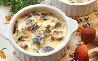 Жульен с белыми грибами рецепт с фото