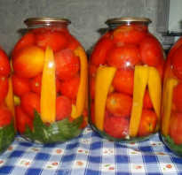 Как замариновать перец с помидорами на зиму