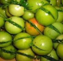 Зеленые помидоры в кастрюле рецепт быстрого приготовления