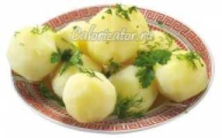 Сколько калорий в толченой картошке. Сколько калорий в отварном картофеле: калорийность для разных рецептов. Полезные свойства картофеля вареного