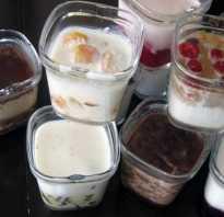 Как заквасить йогурт в йогуртнице