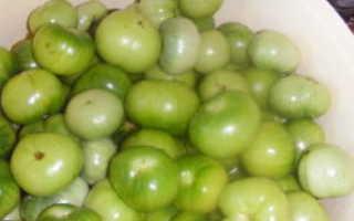 Засолка зеленых помидор с зеленью и чесноком