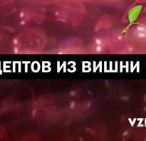 Как поставить вино из ягод вишни