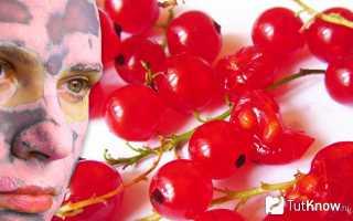 Маски для лица из красной смородины
