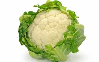 Заморозить цветную капусту на зиму рецепты