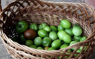 Зеленые помидоры рецепты с фото пальчики оближешь