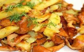 Как готовить лисички с картошкой на сковороде