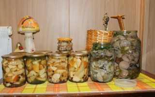 Засолка грибов на зиму в домашних условиях