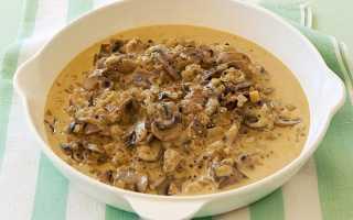 Соус из свежих грибов рецепт. Грибная подлива — придаем новый вкус привычным блюдам. Как готовить грибной соус на бульоне