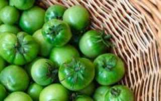 Засолка зеленых помидор в кастрюле на зиму