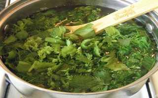 Щи из молодой крапивы. Пошаговый рецепт приготовления супа щи из крапивы. Как правильно выбрать ингредиенты