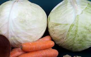 Закваска капусты в домашних условиях рецепты
