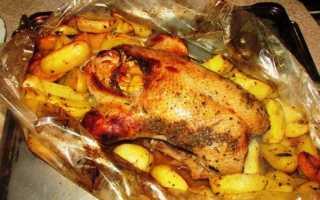 Запечь гуся в рукаве в духовке рецепты
