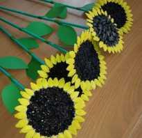 Как покрасить тыквенные семечки