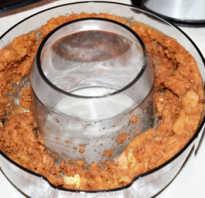Жмых от яблок из соковыжималки что делать