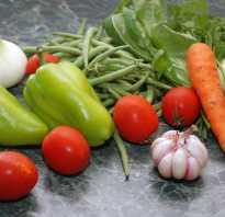 Зеленое лобио рецепты с фото