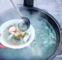 Из какой рыбы варить уху на костре