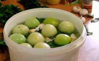 Засолка помидор в ведре бабушкин рецепт