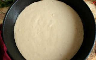 Жидкая пицца в духовке рецепт с фото
